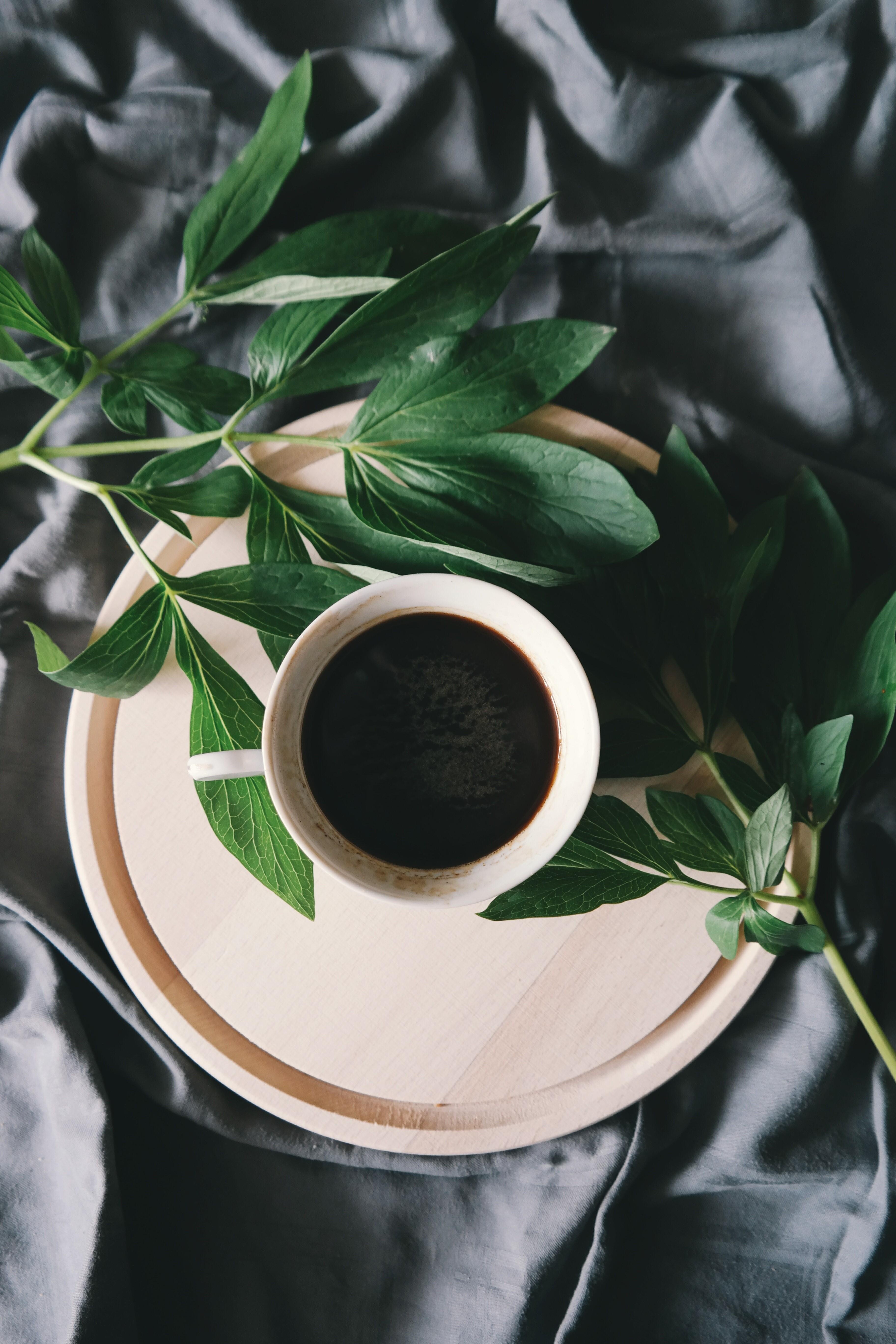 Pausa caffè? Sì, ma allo zenzero!