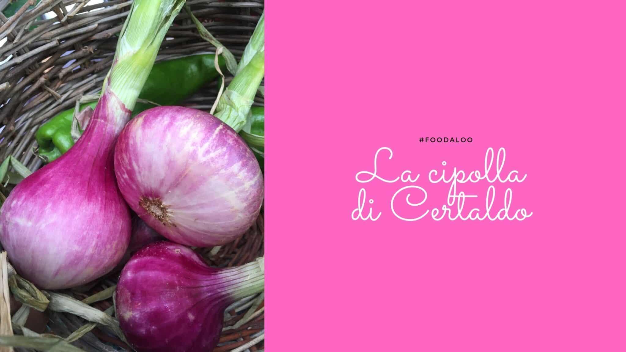 La Cipolla con una lunga storia: la cipolla di Certaldo . Presidio Slow Food