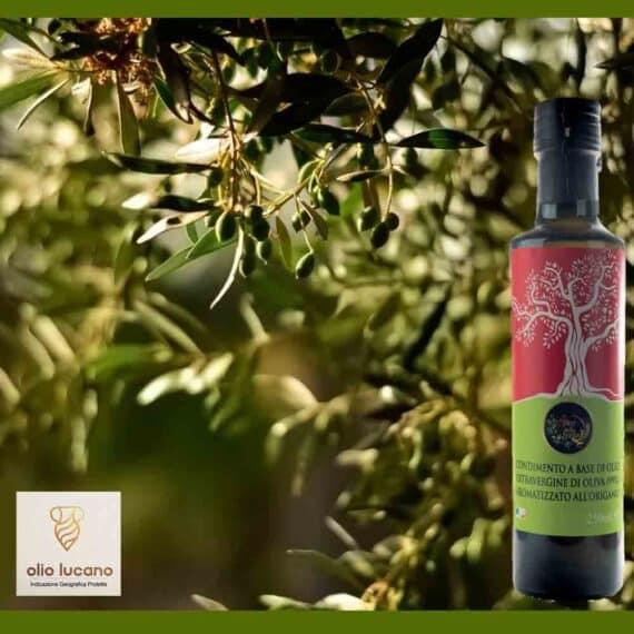 Olio extravergine di oliva all'origano