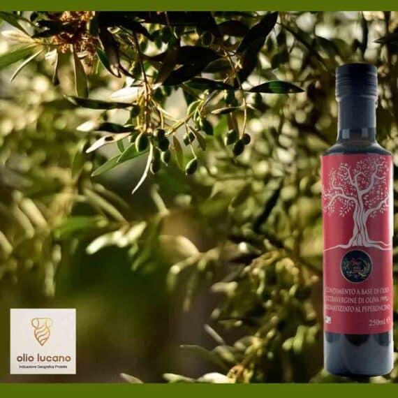 Olio extravergine di oliva al peperoncino
